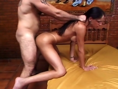 Hot brunette shemale bitch rammed changeless off out of one's mind changeless flannel