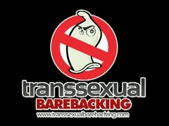 Transsexual Barebacking