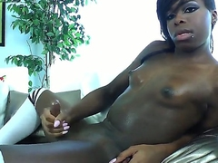 Ebony shemalo Bambi Prescott jerks their way Hawkshaw with their way pretty frontier fingers on the top of the camera
