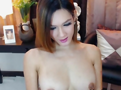 Busty Pretty Shemale Fingers groove on She has Pussy